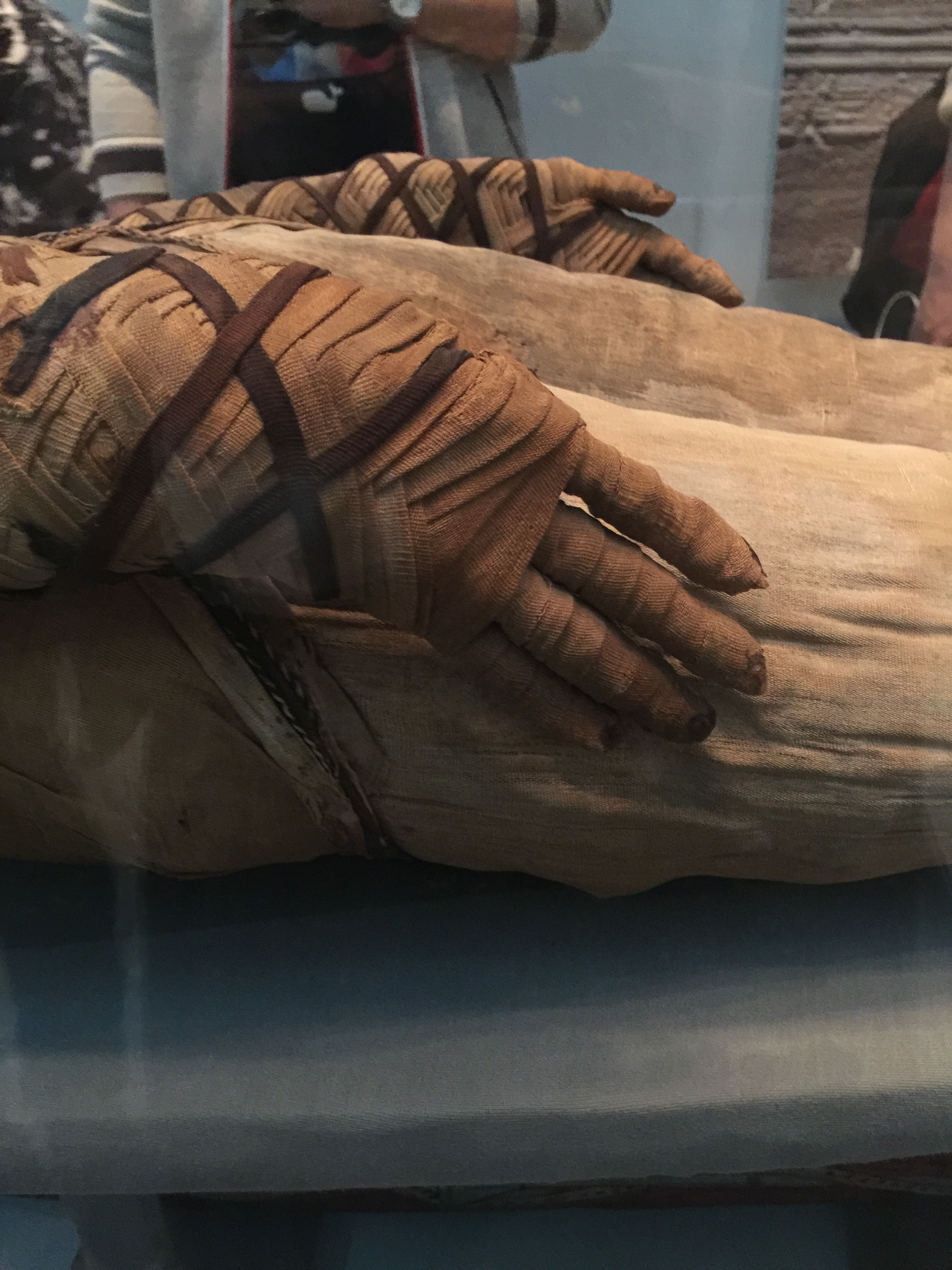 Intricately wrapped hand of an Egyptian mummy