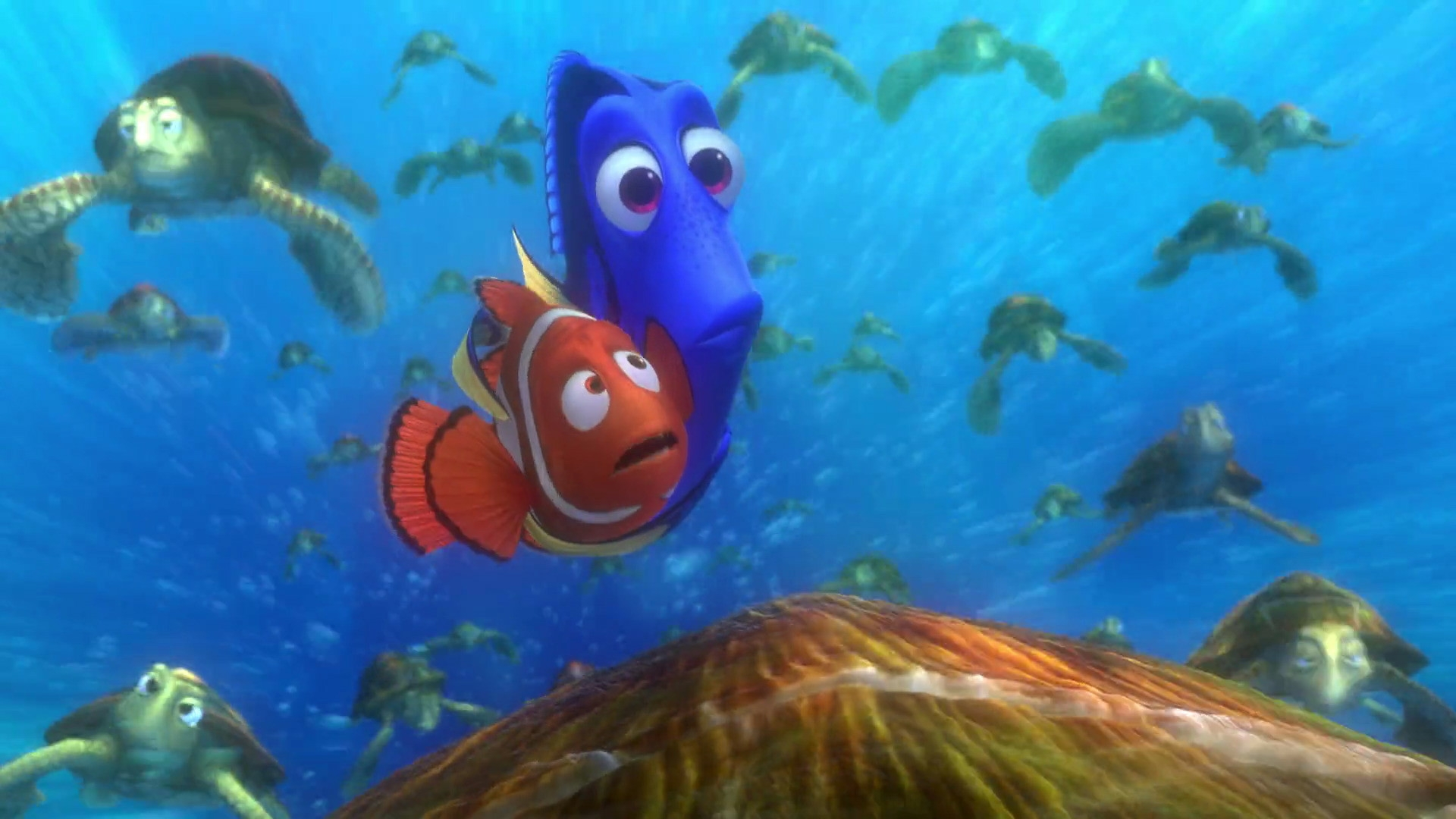 43873-finding-nemo-dory-and-marlin-with-the-turtles.jpg