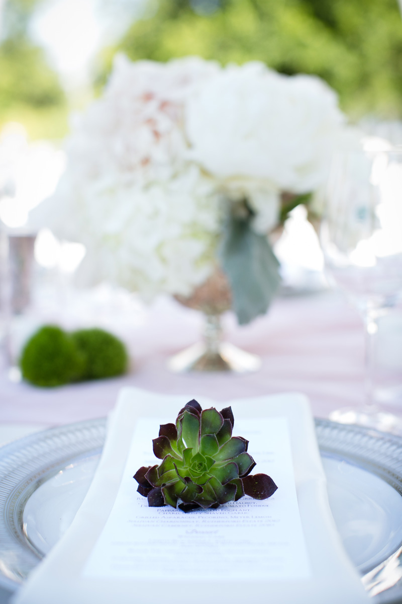 marilynambra.com | Pond's Edge Estate Weddings | Marilyn Ambra Party Consultants | Anna Kuperburg Photography _ (4).jpg