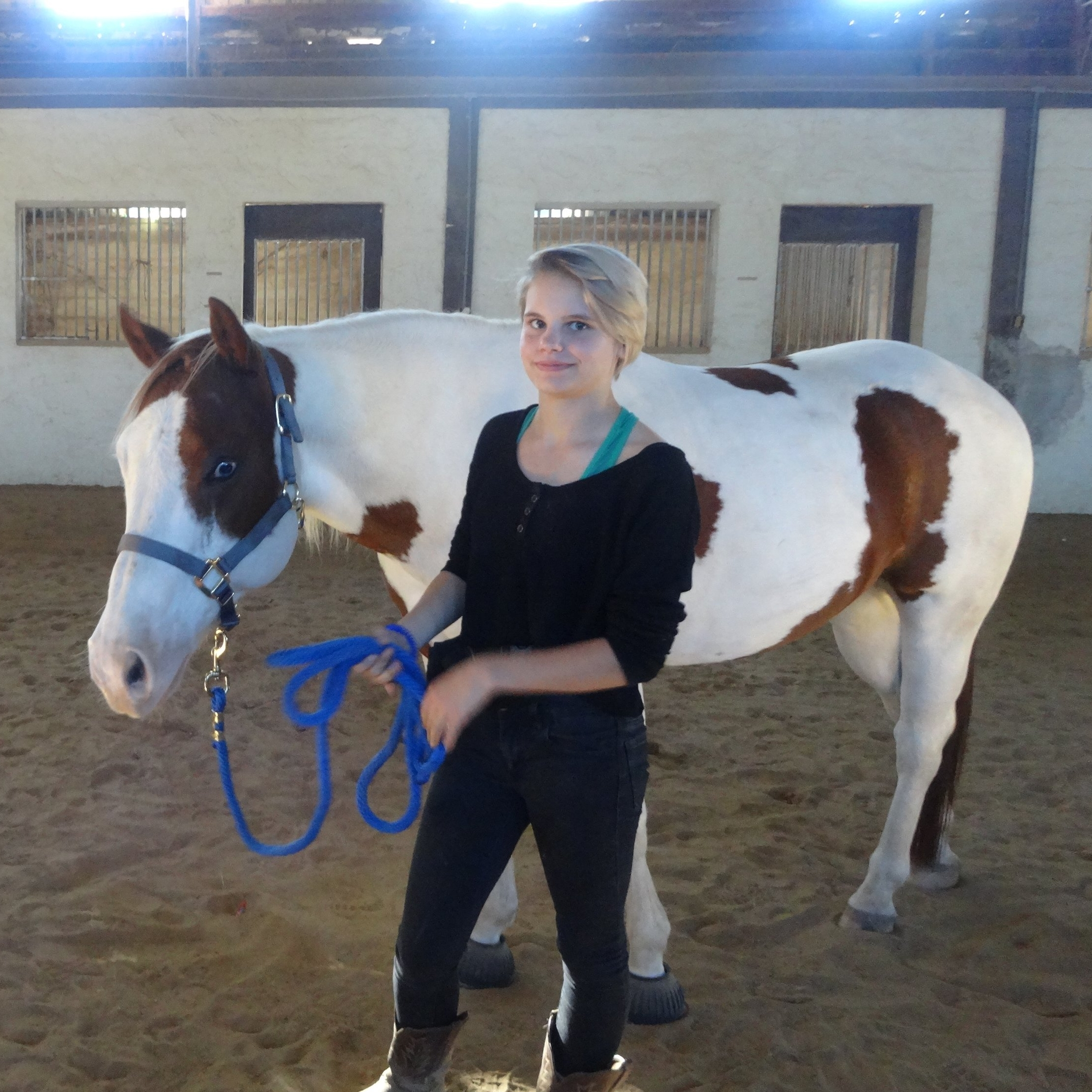 Chisholm and Trinity- senior rescue horse, clicker training, confident horse, horsewoman, companion issues.