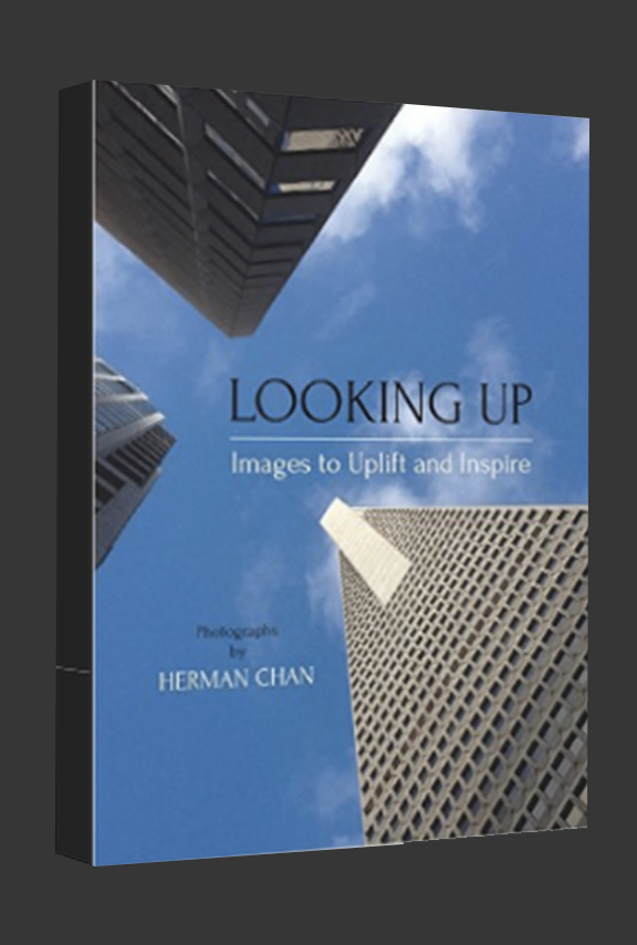 looking up cover.jpg