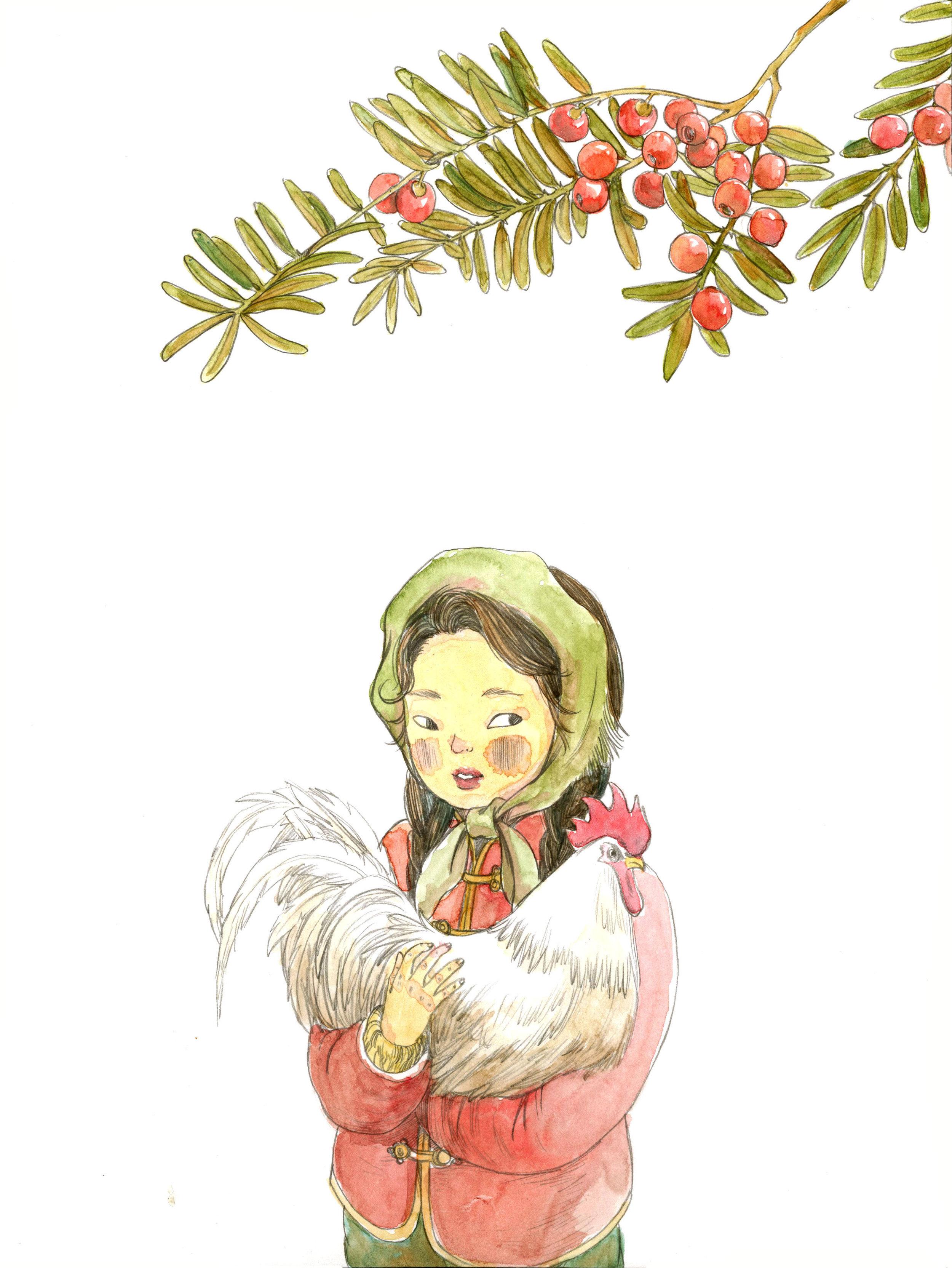 21.红豆杉.jpg