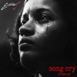 Song Cry Remix cover - Erikka J.jpg