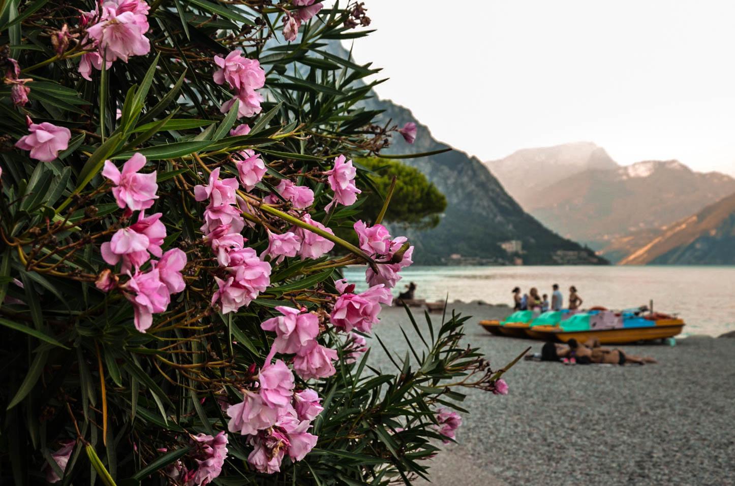 Limone sul Garda, Lake Garda