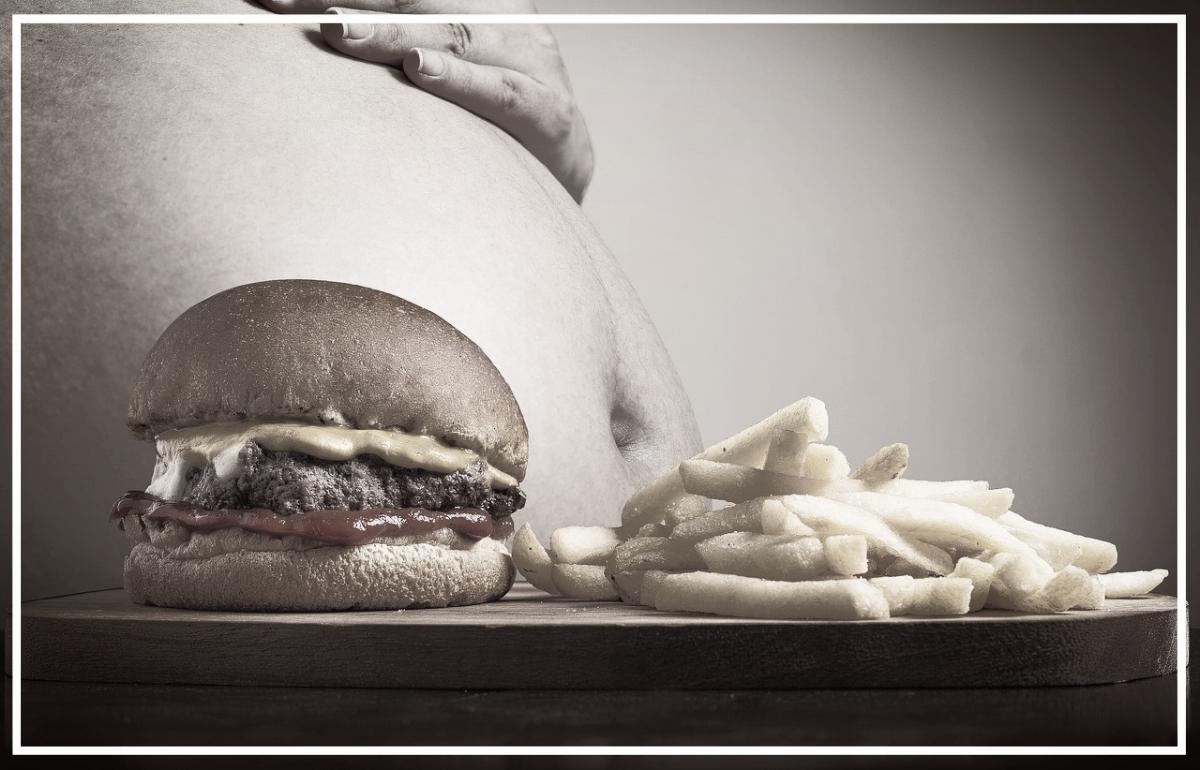 hamburger-2683042_1280.jpg