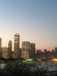 Skyline views from the Shedd.  I love Chicago in the summer!