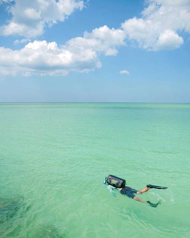 free floatin' and flipperin' and finding all the fish in florida. @otterbox #unruletheoutdoors #otterboxambassador