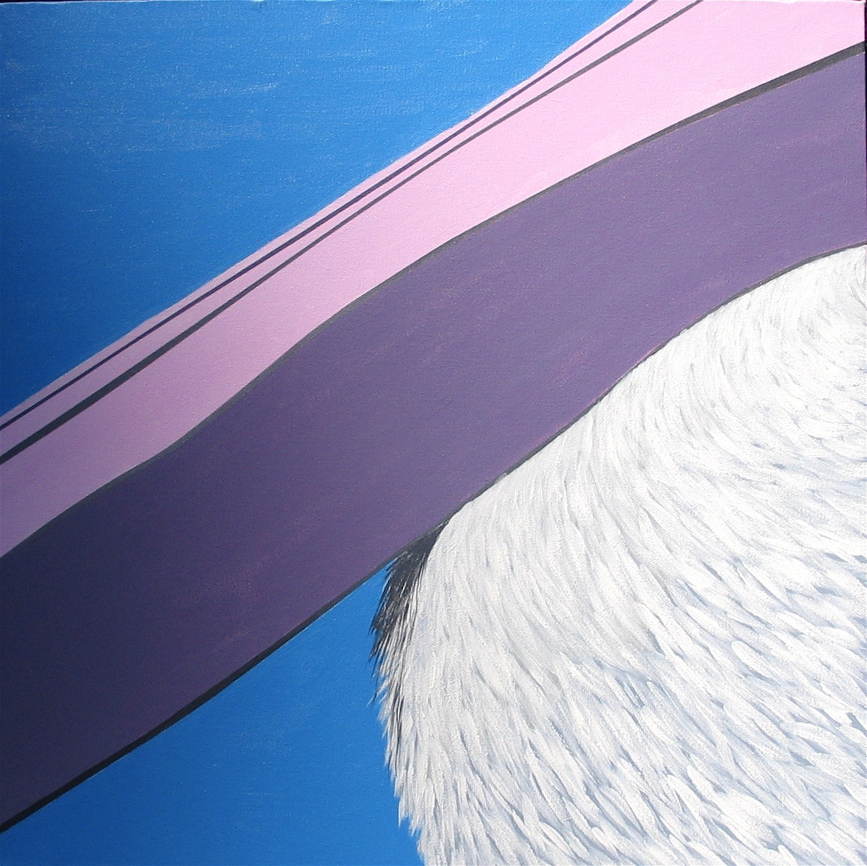 Pelican 3 : 45 X 45 cm acrylic on canvas