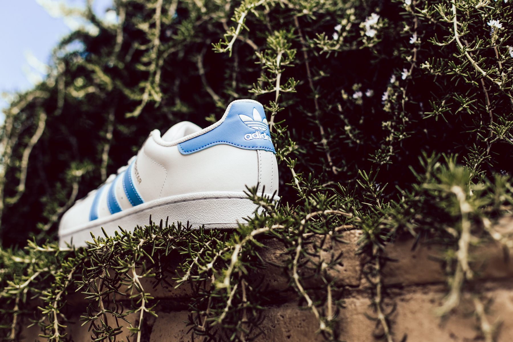 Adidas Superstar Foundation White Light Blue   - Feature-LV-6190.jpg
