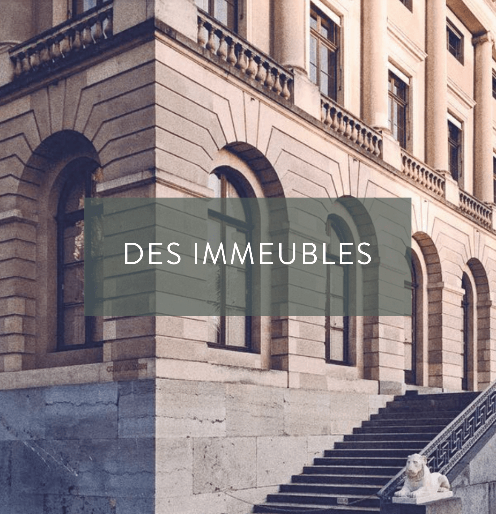 bumper-investments-immobilier
