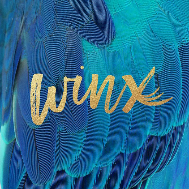 Winx Lash Studio