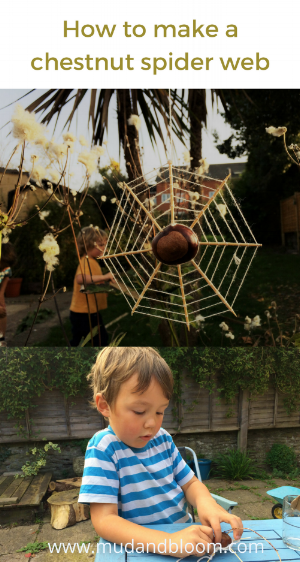 How to make a chestnut spider web