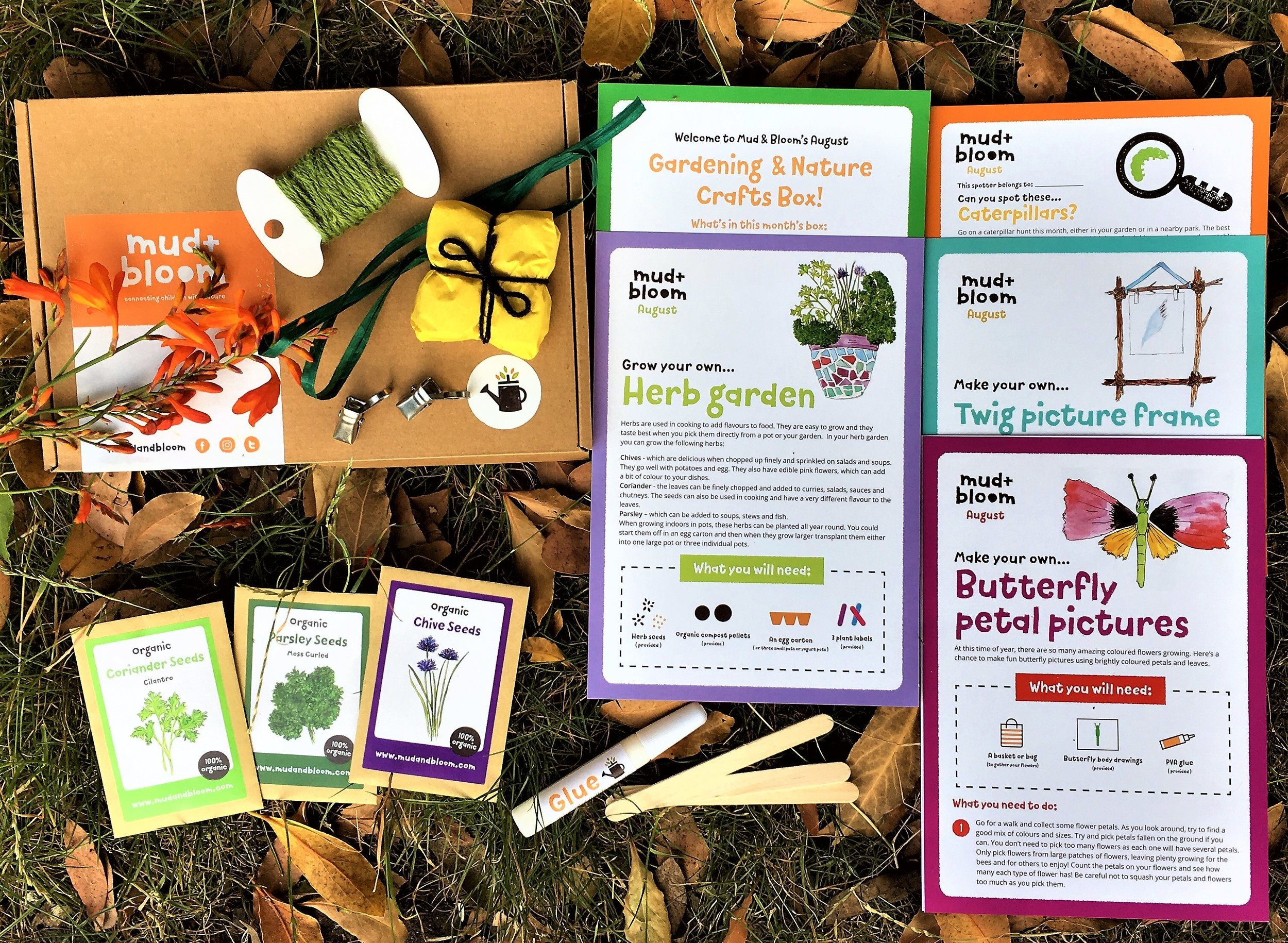 August's Mud & Bloom box - To buy August's box as a one of purchase for £7.95 click here