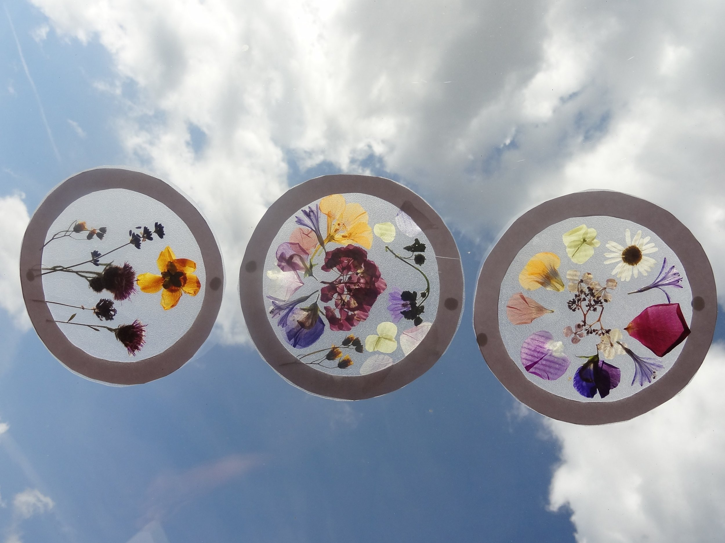 Nature crafts making pressed flower suncatchers