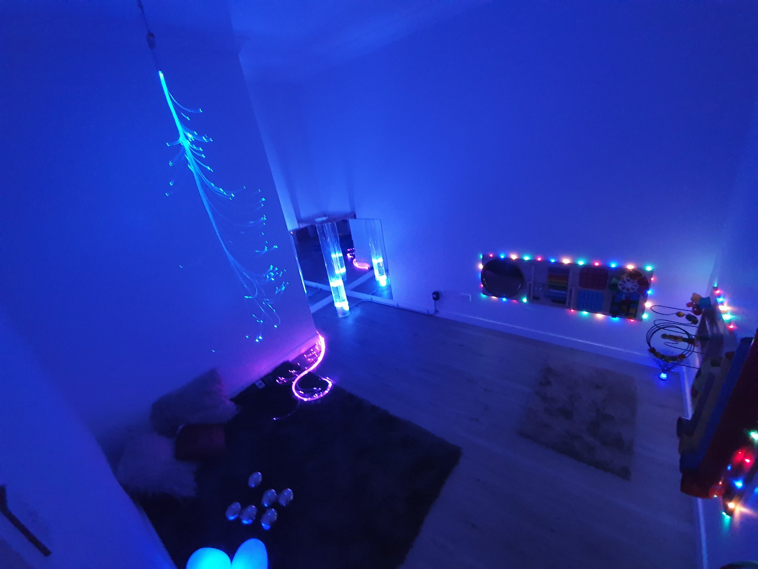 sensory room glasswing therapy