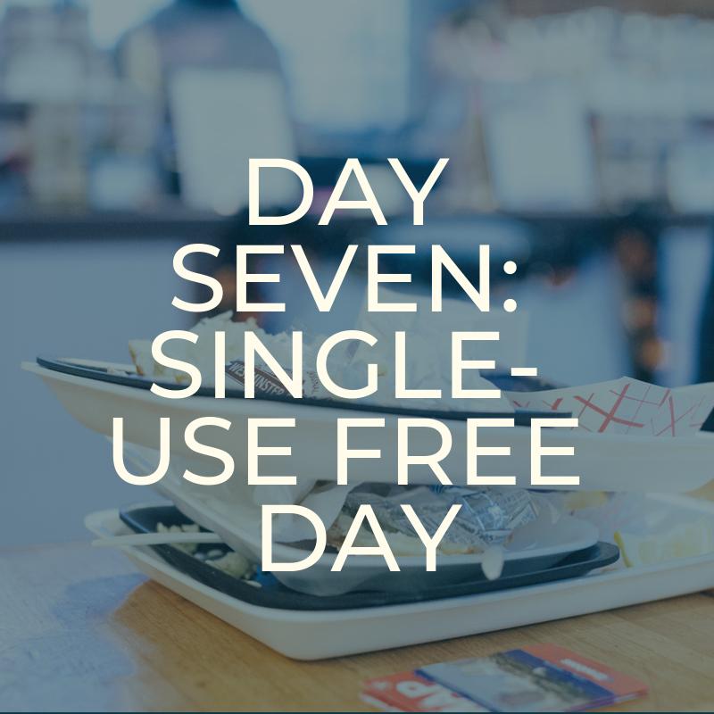 A Zero Waste Life. SINGLE USE FREE DAY