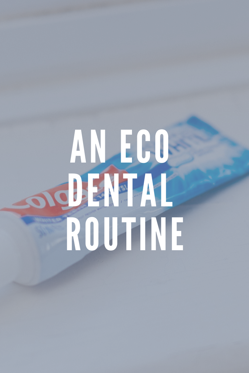 Copy of Zero Waste Teeth and Dental