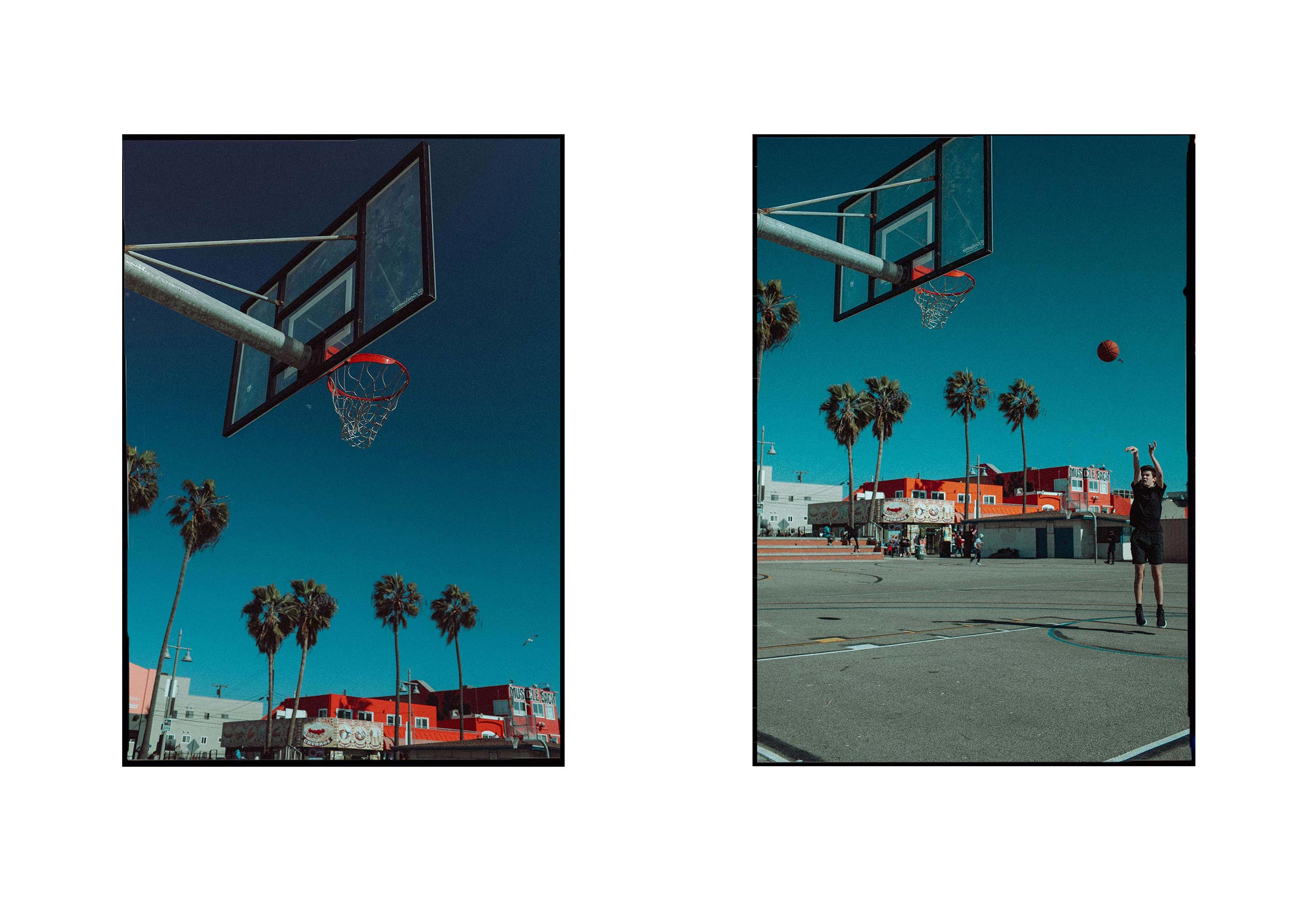 Courts & palms. Santa Monica, California.