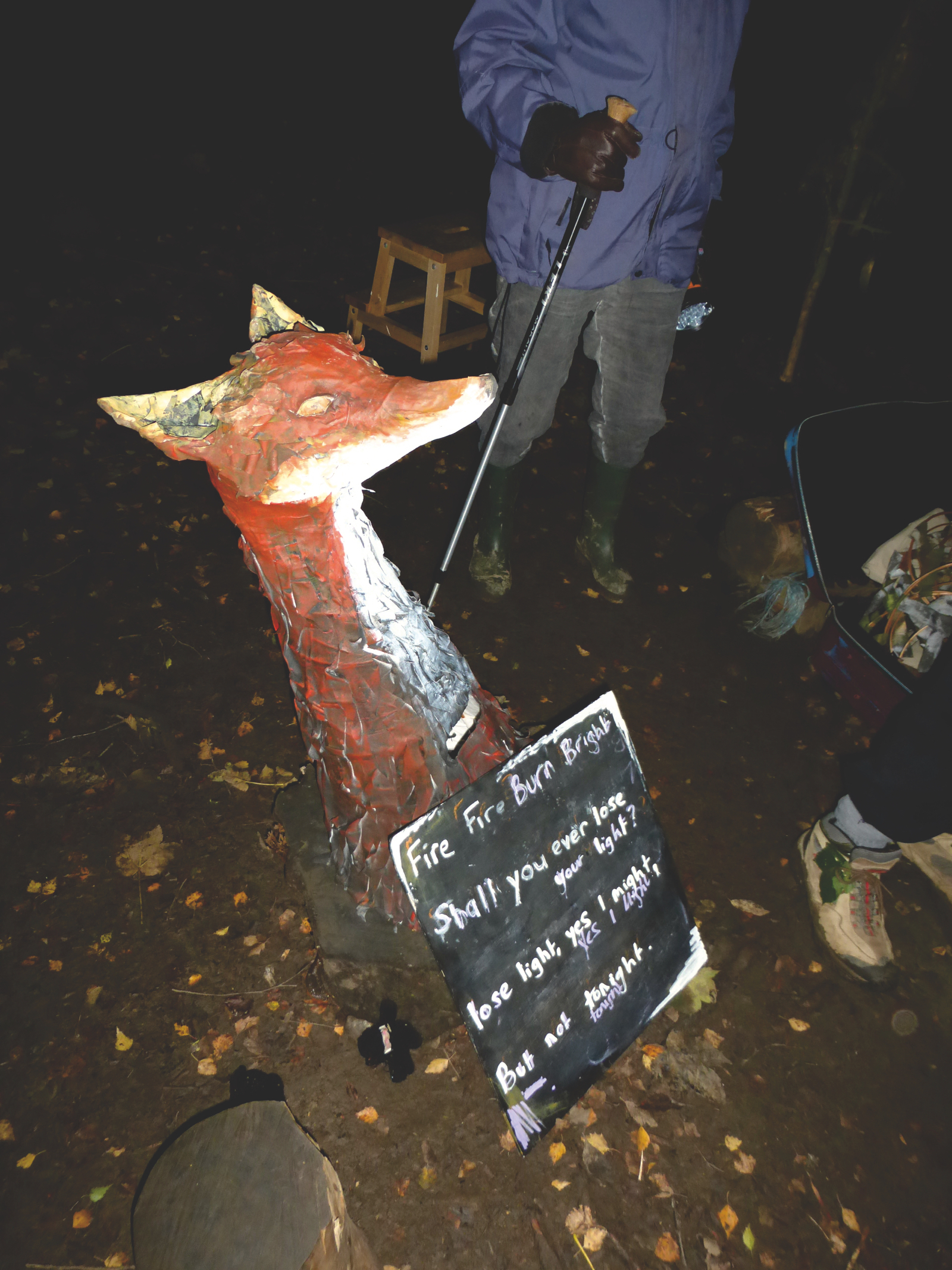 The fox at the campfire