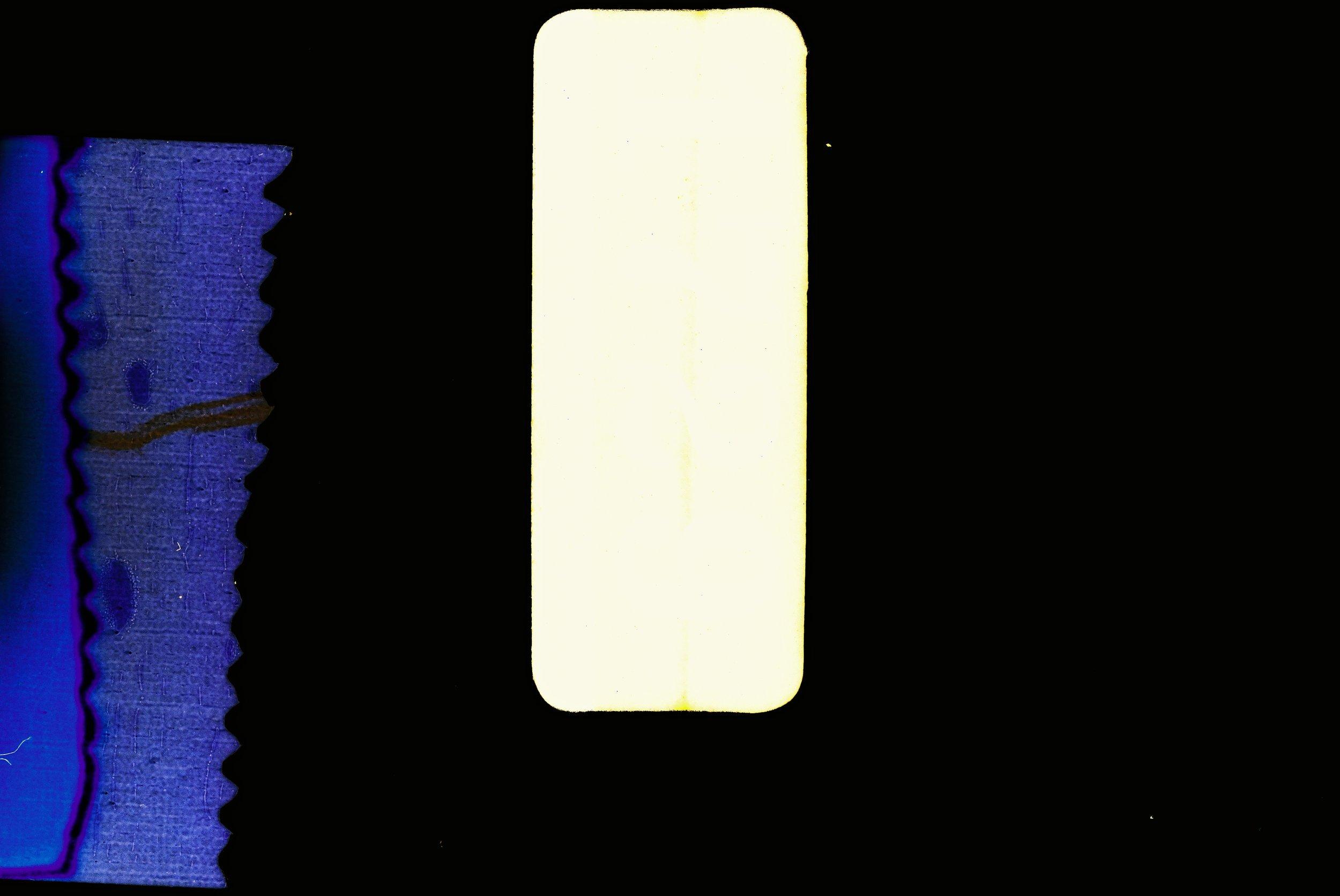 Divider 1.jpg