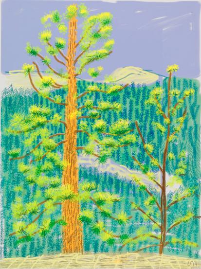 The Yosemite Suite