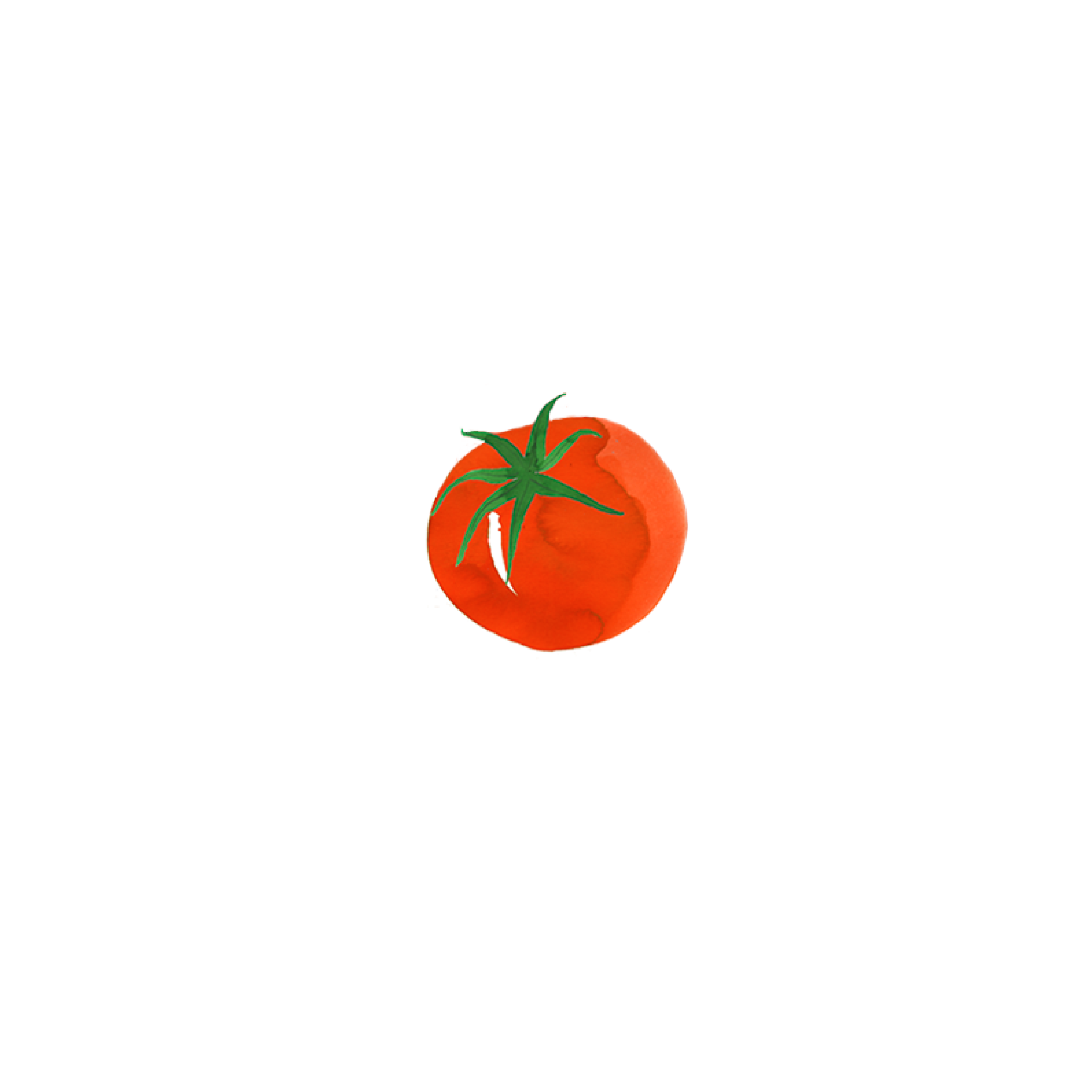 tomate_groß.png