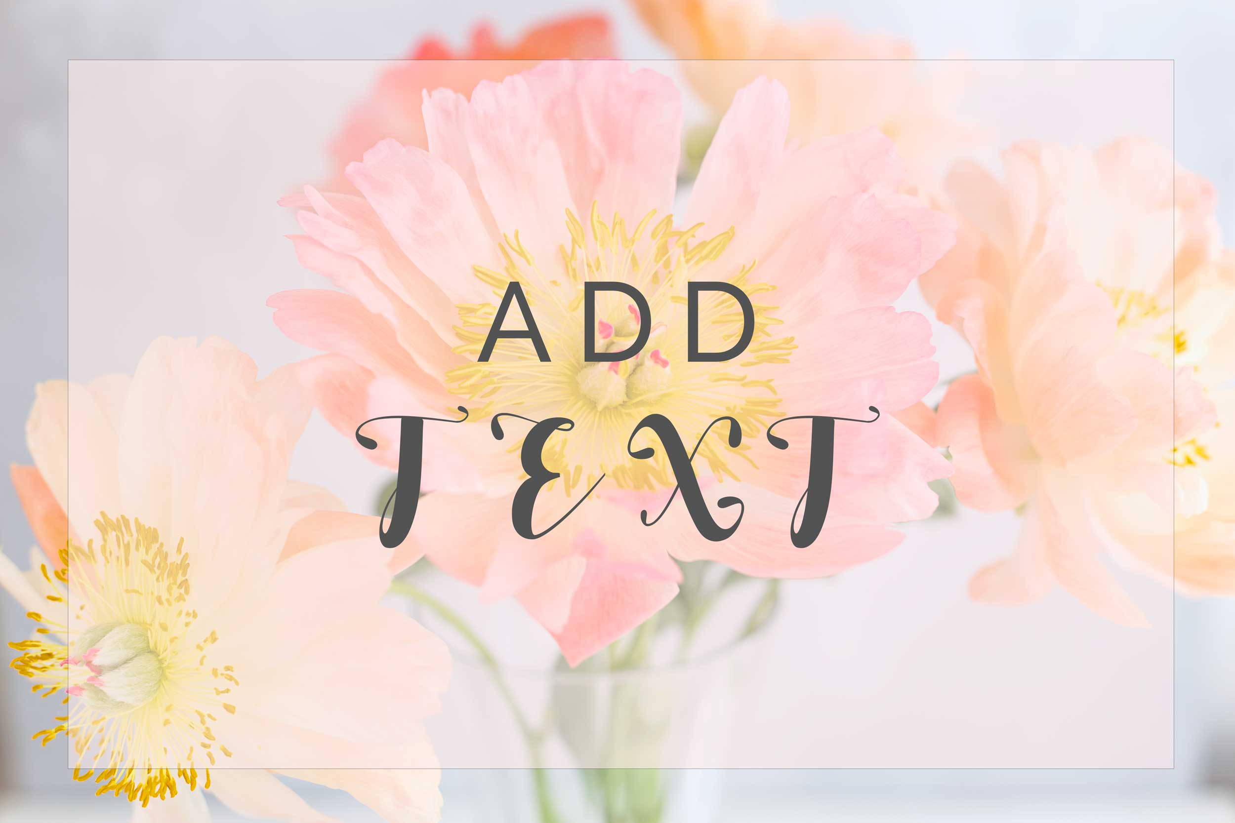Peonies_add_Text_