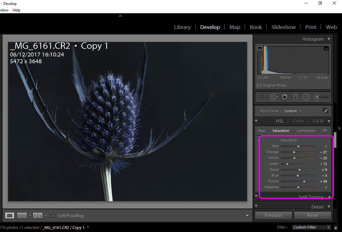 Blue_Thistle_Screenshot.jpg