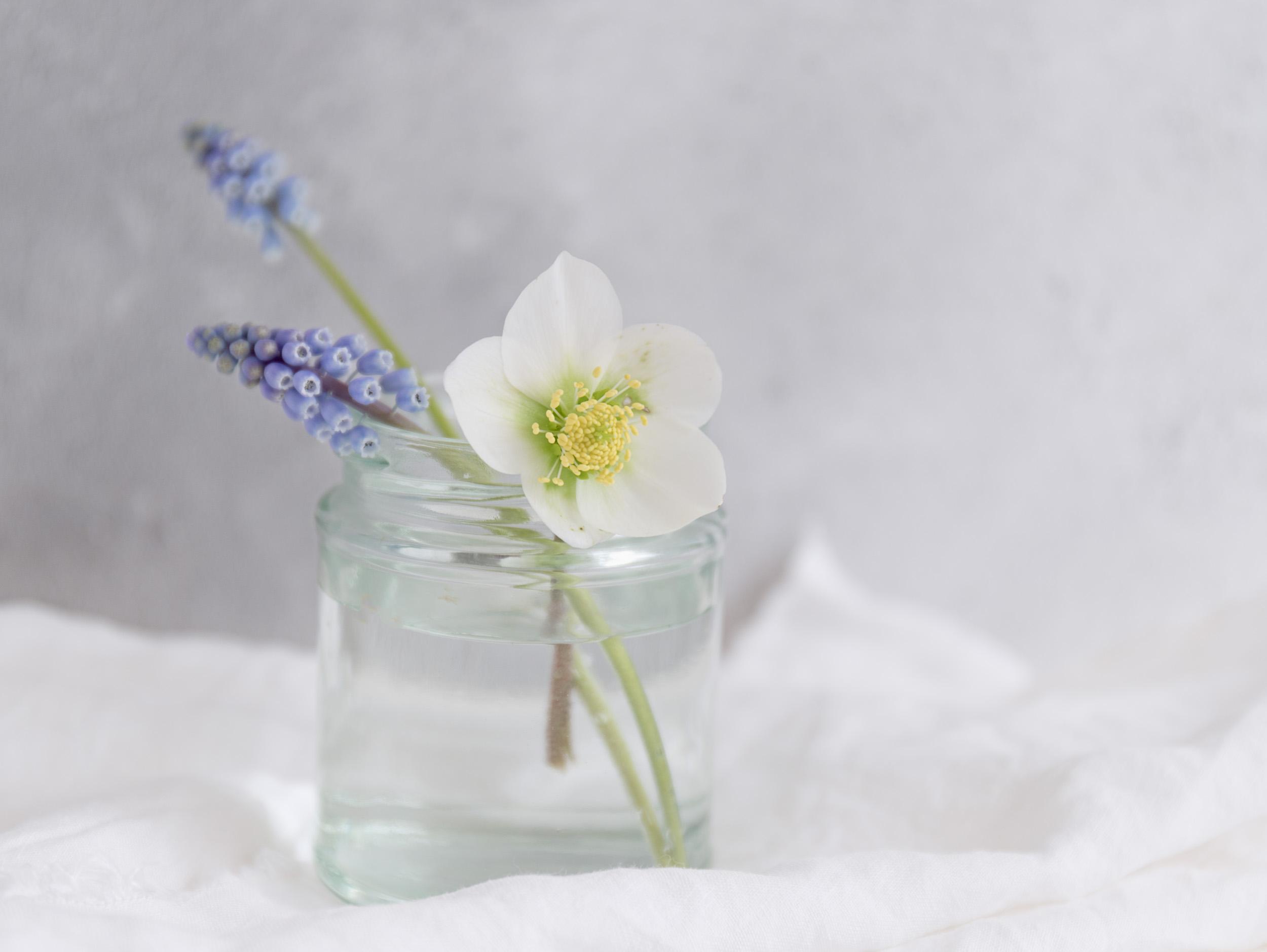 Spring_Flowers--6.jpg