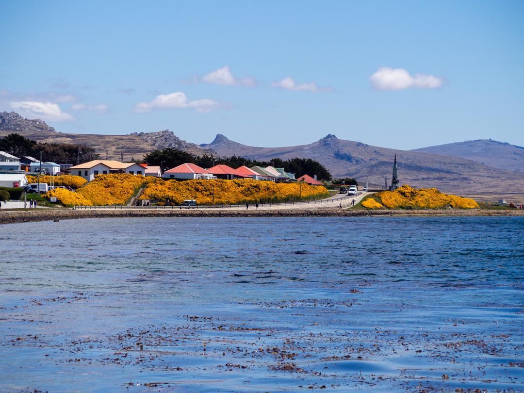 LH_Falklands2500-280681.jpg