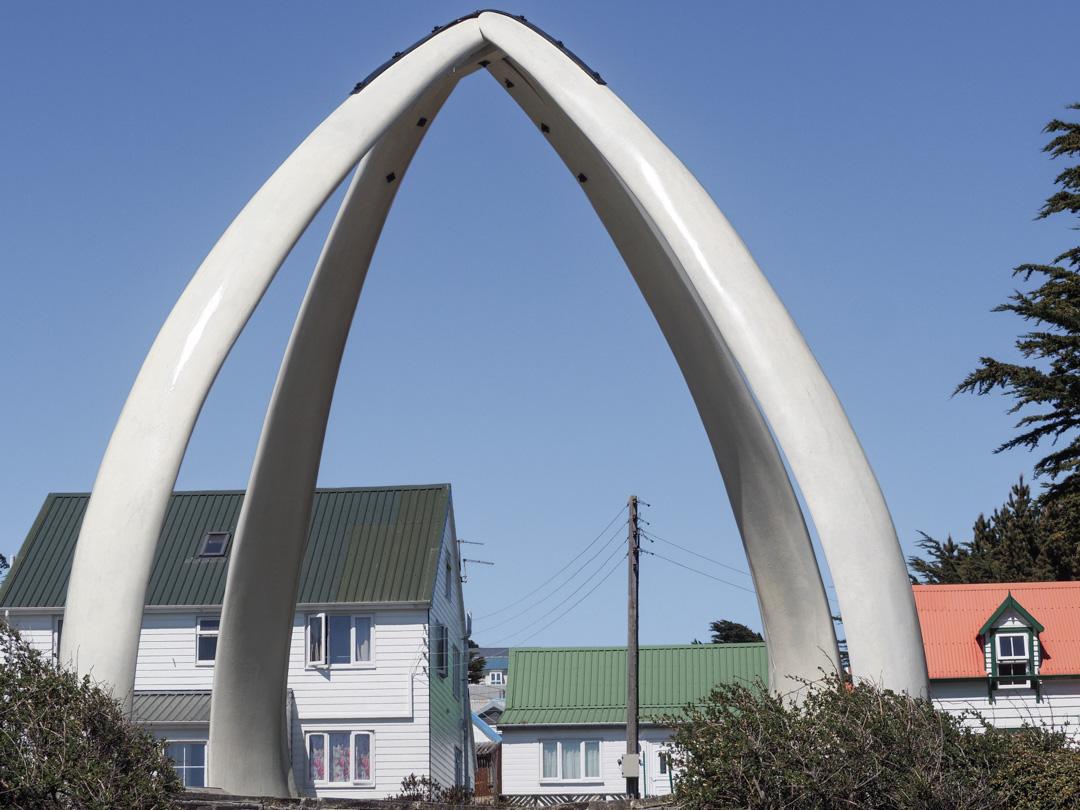 LH_Falklands2500-280651.jpg