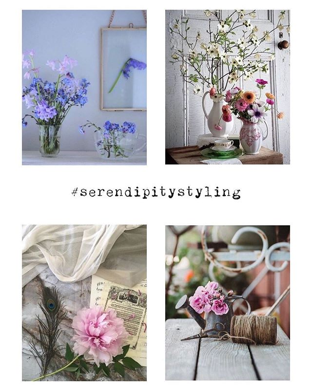 So a heartfelt thanks to everybody who supported our hashtag #serendipitystyling for the last 2 years, it has been a pleasure seeing all the fabulous creative photos but today is the last fab four so on behalf of myself, @flisstee and @ros_nichols here are our final choices  TL@happily_ambling TR@cabry58 BL@joausilvia BR@sixteenmilesout  Thank you all so much 🌸🌸🌸