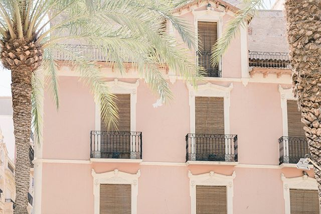 Happy August !  We have been on a short road trip to #Elche, near Alicante in Spain💃🏼The historical centre is beautiful not to mention part of a Unesco World Heritage Centre for it's amazing and extremely very old Palm Trees! 🌴🌴