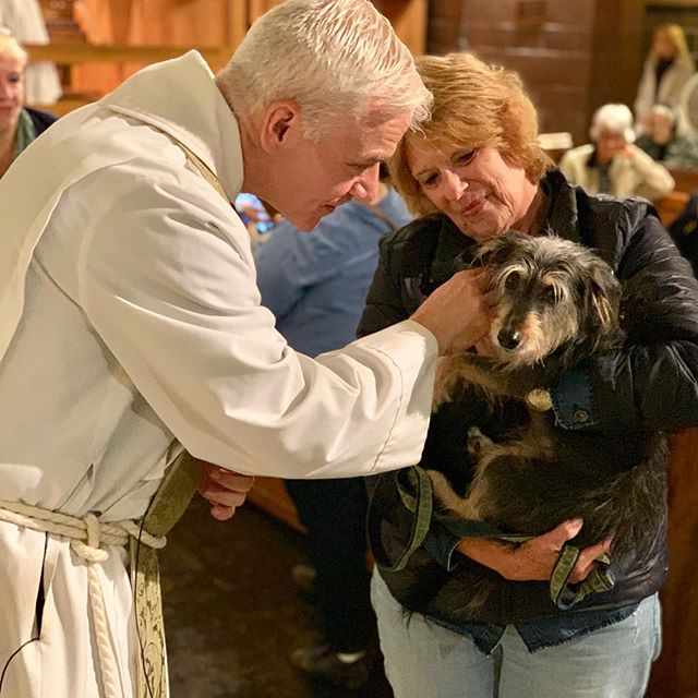 Today Holy Trinity celebrated St. Francis Sunday with the blessing of several birds, a few cats, and lots of dogs.