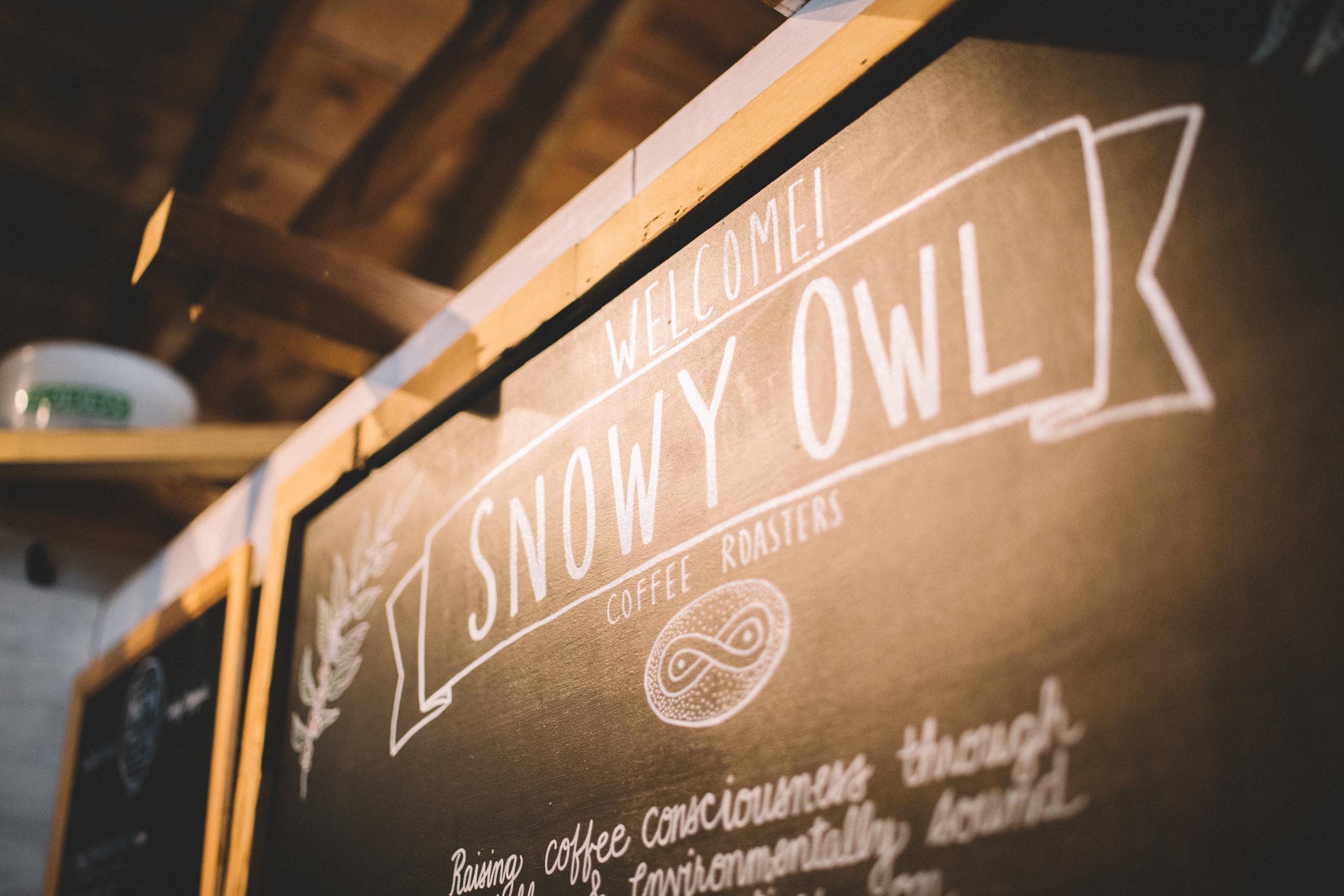 TPC-SnowyOwl-17.jpg