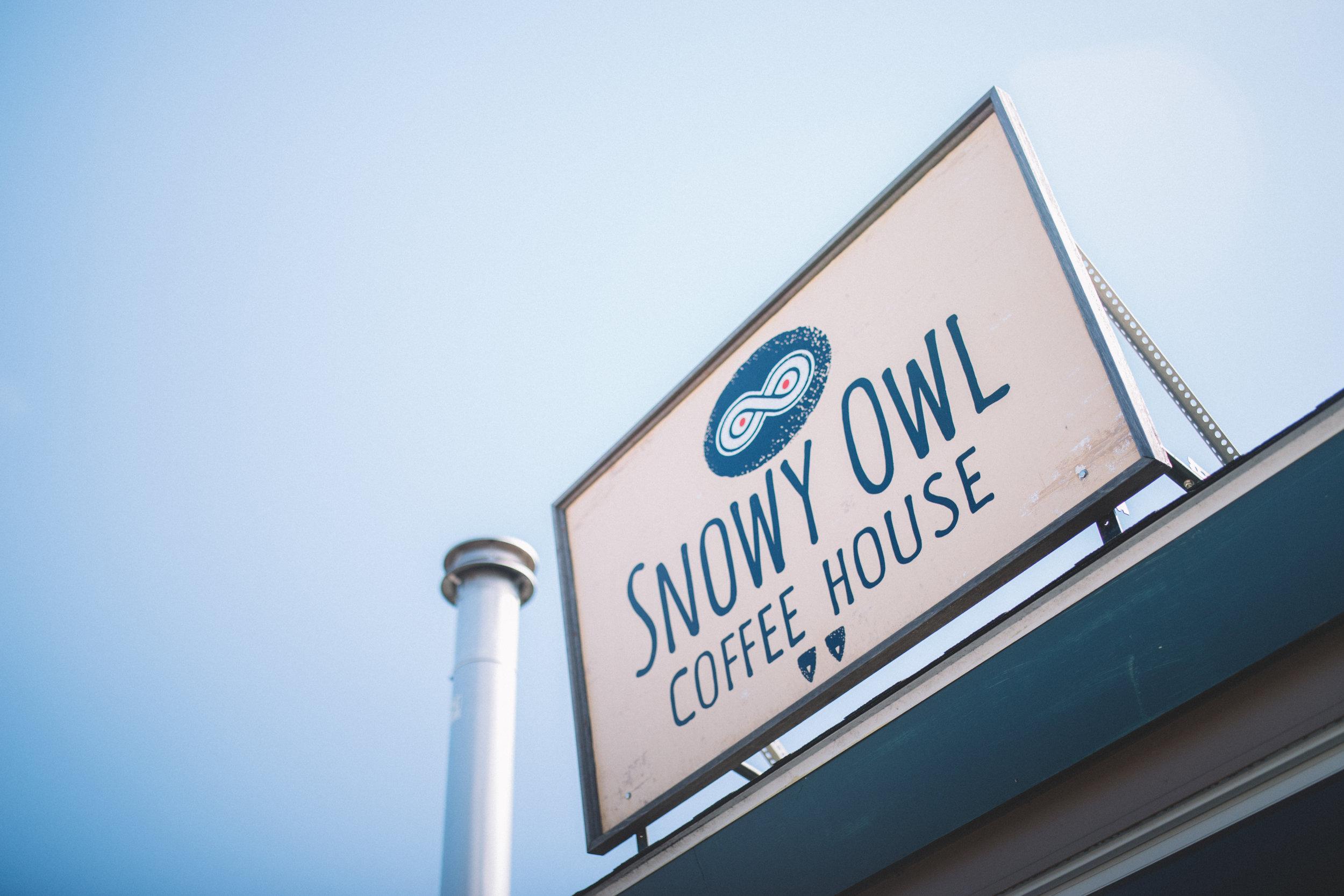 TPC-SnowyOwl-26.jpg