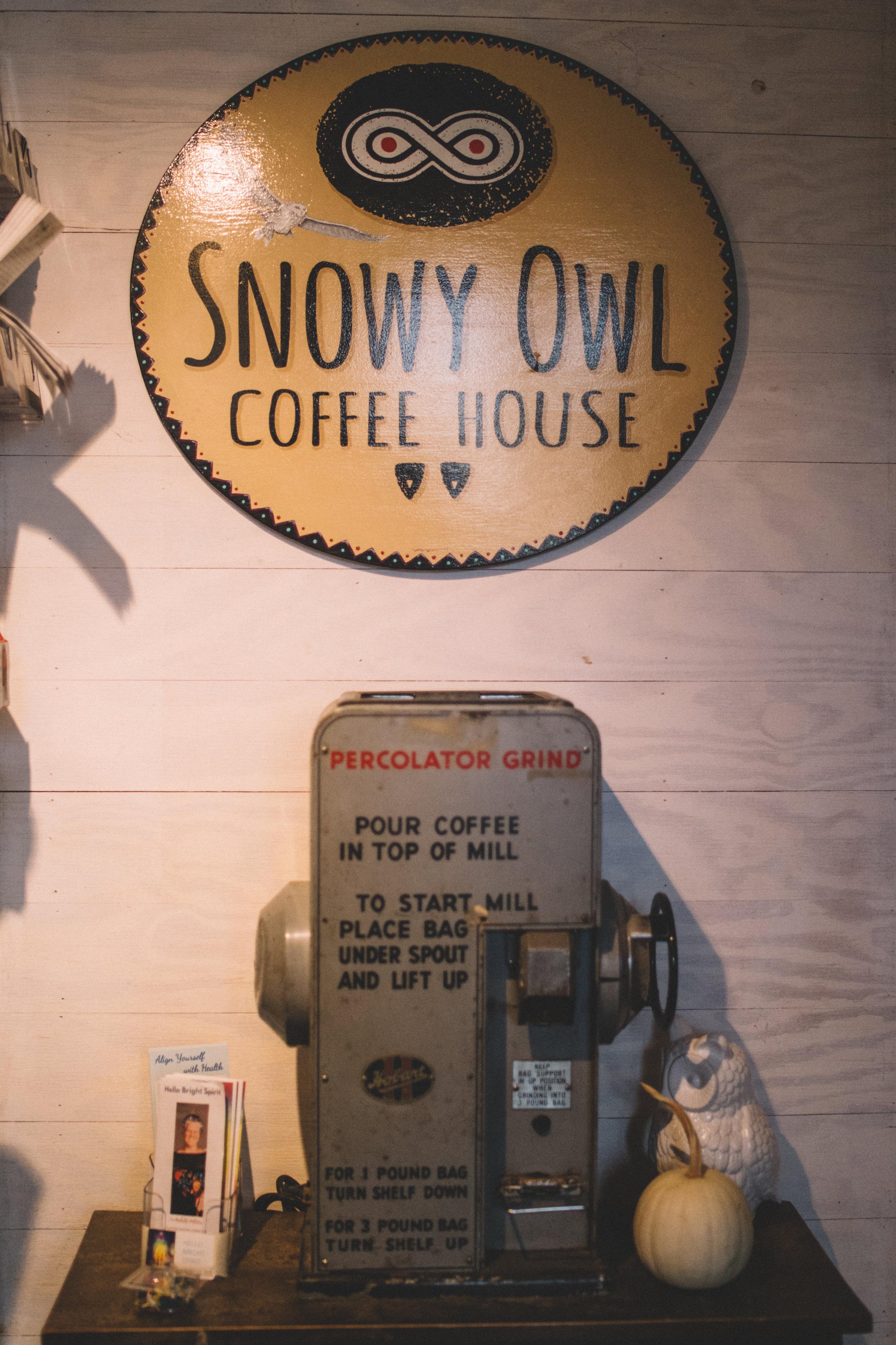 TPC-SnowyOwl-33.jpg