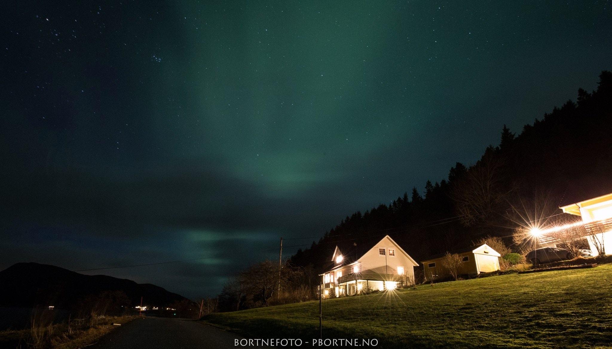 nyegolfsko-northern-lights-bortne-norway (2).jpg