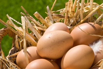 eggs in basket.jpg