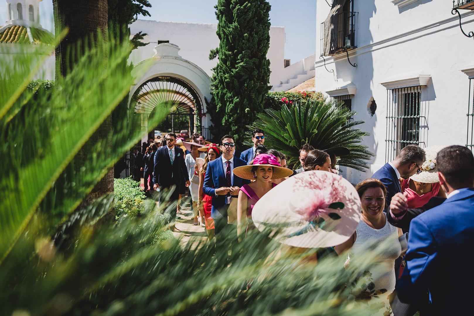 Boda Santa Ana, Sevilla - Hacienda Los Miradores. Carlos Pavón Fotografía (102).jpg