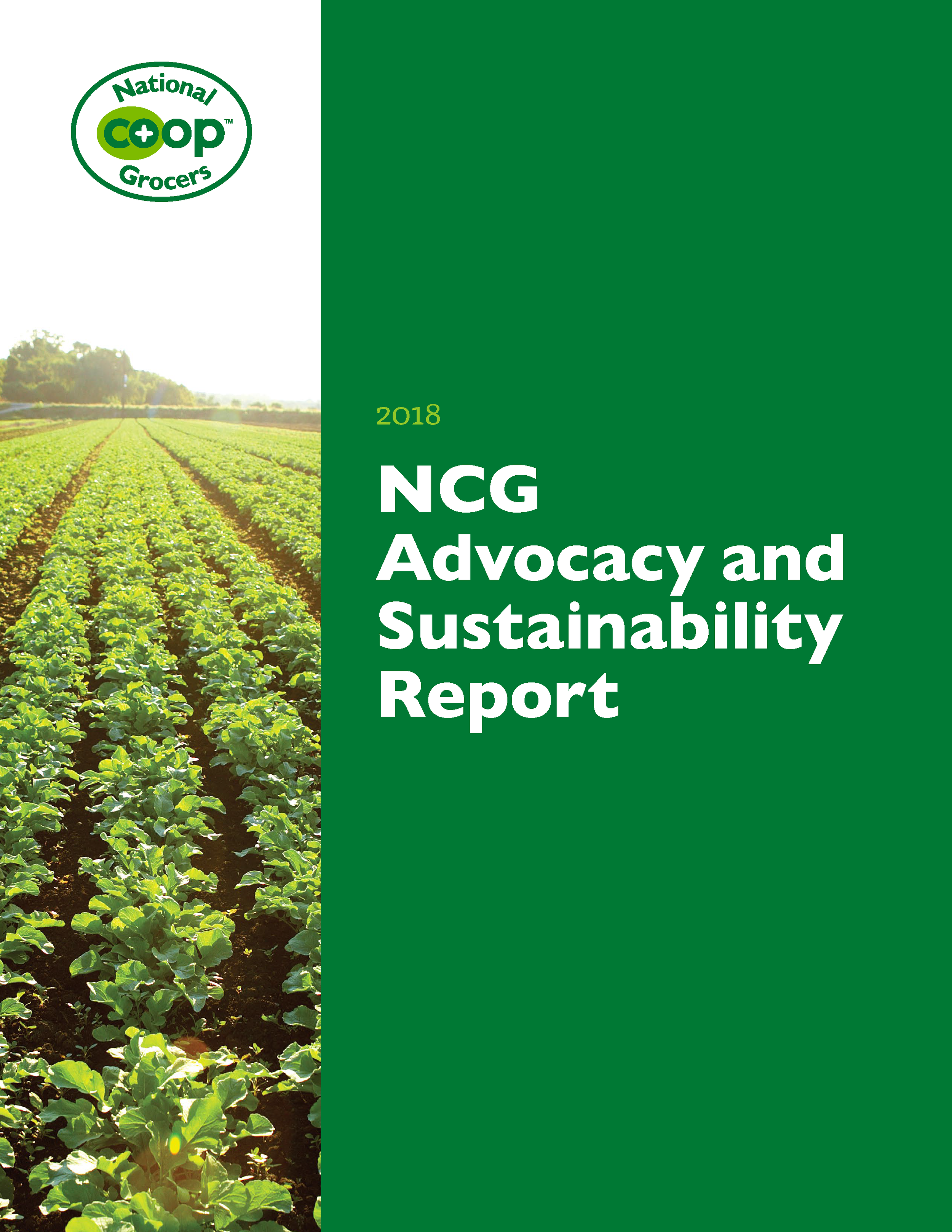 Click to open NCG's Sustainability Report!