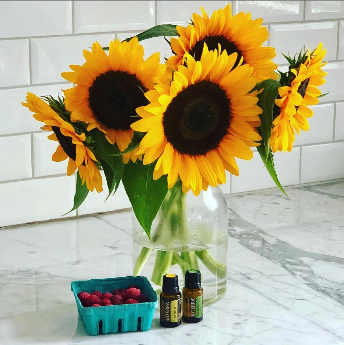 lemon and melaluca essential oil