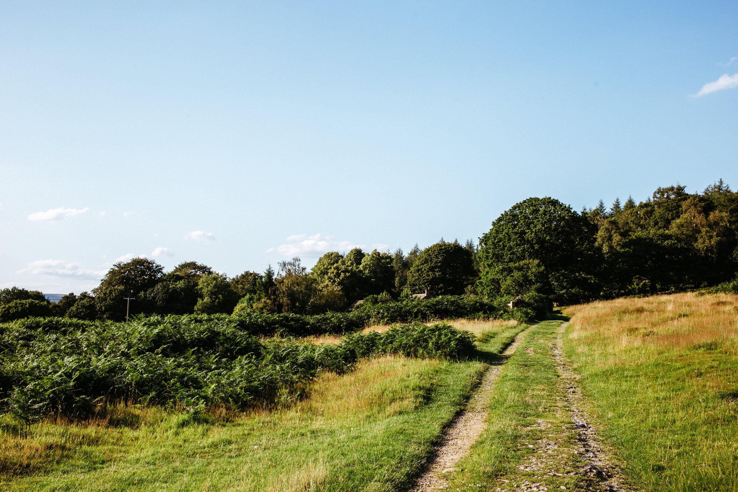 Follow the farm track across wooded farmland