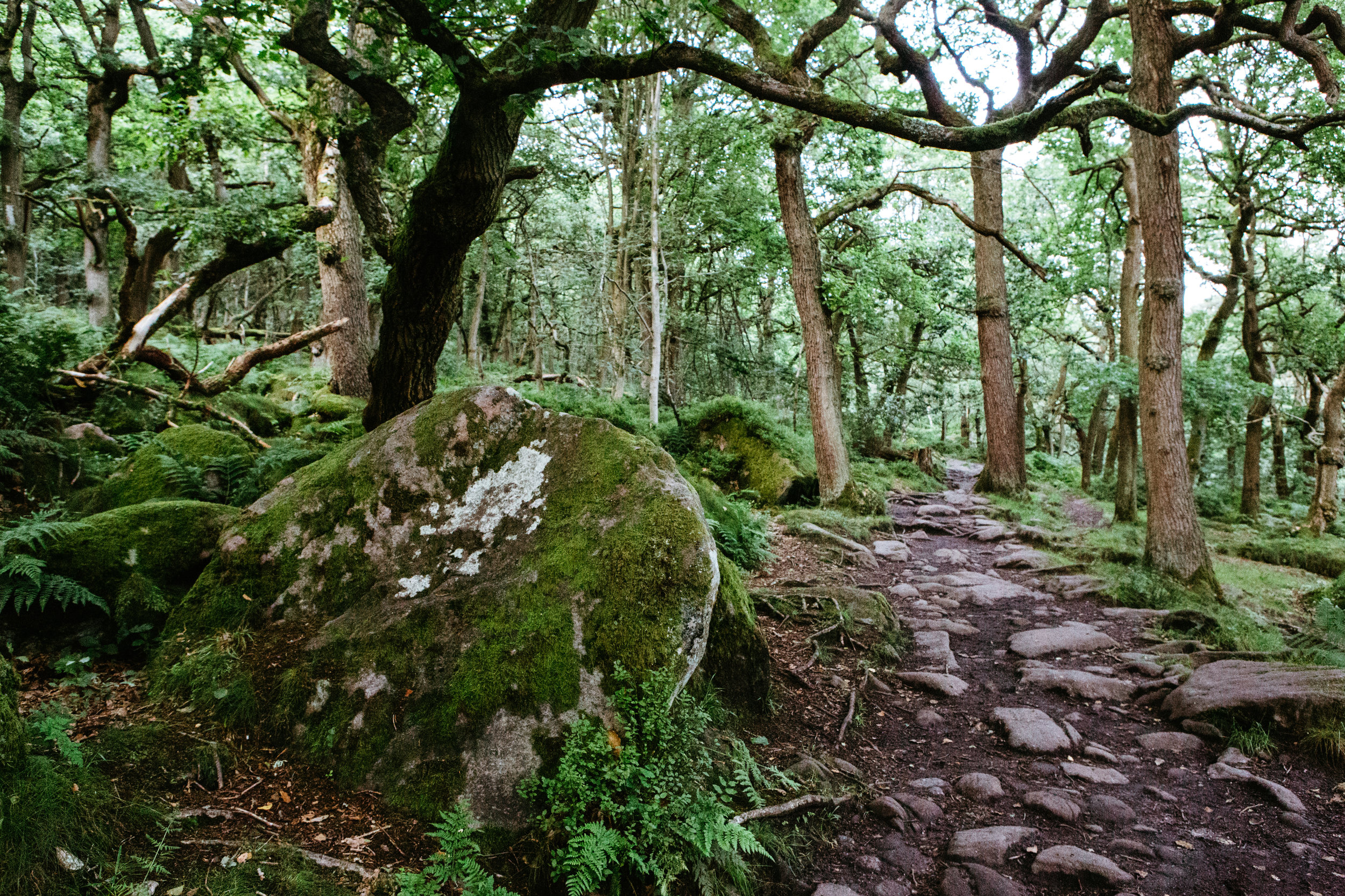 An old millstone on the path in Padley Gorge