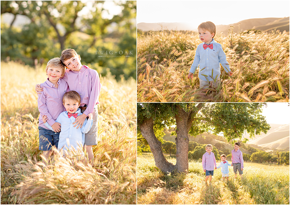 east-bay-walnut-creek-danville-alamo-lafayette-orinda-moraga-san-ramon-family-photographer-photography_0297-copy.png