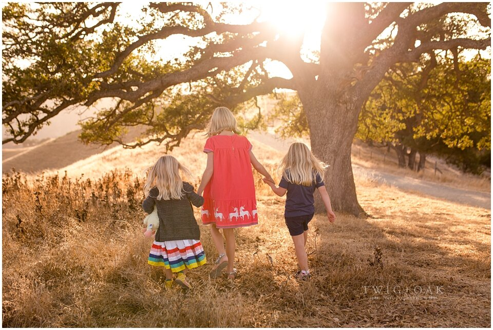 east bay walnut creek danville alamo lafayette orinda moraga san ramon family photographer photography_0091.jpg