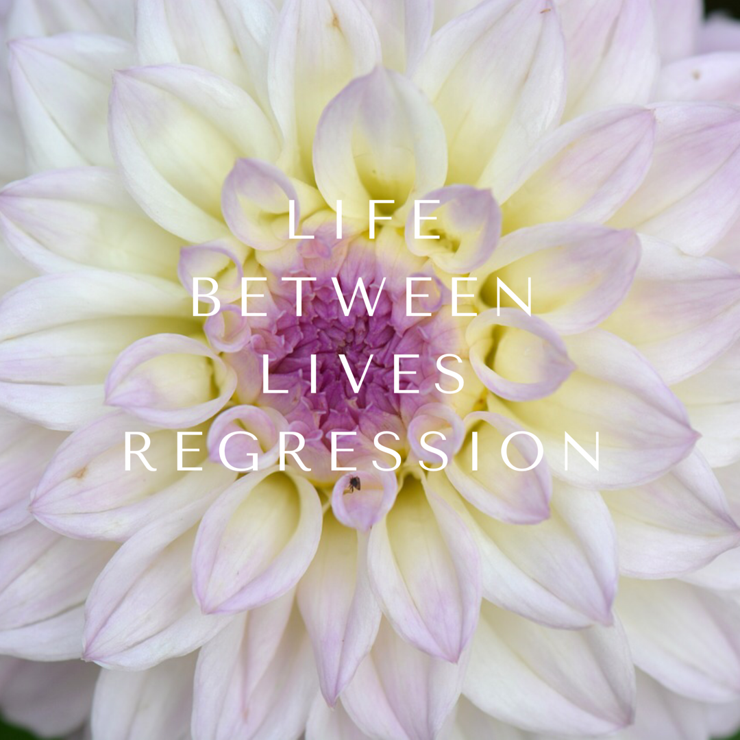 life between lives regression