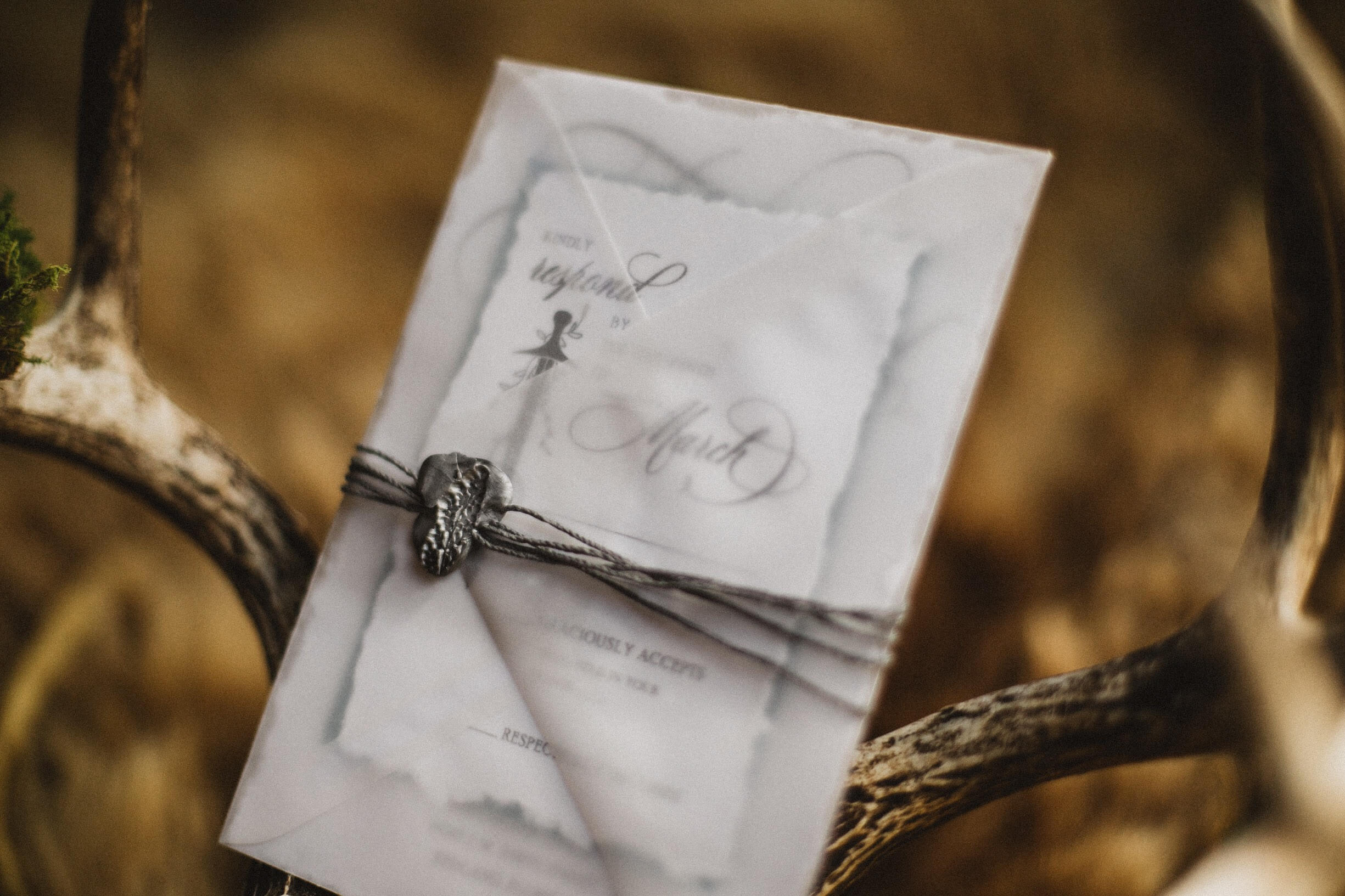 Or maybe a stamped bellyband.  Photo Credit:  Lara Rose Photography   Stationery:  Only One Mark