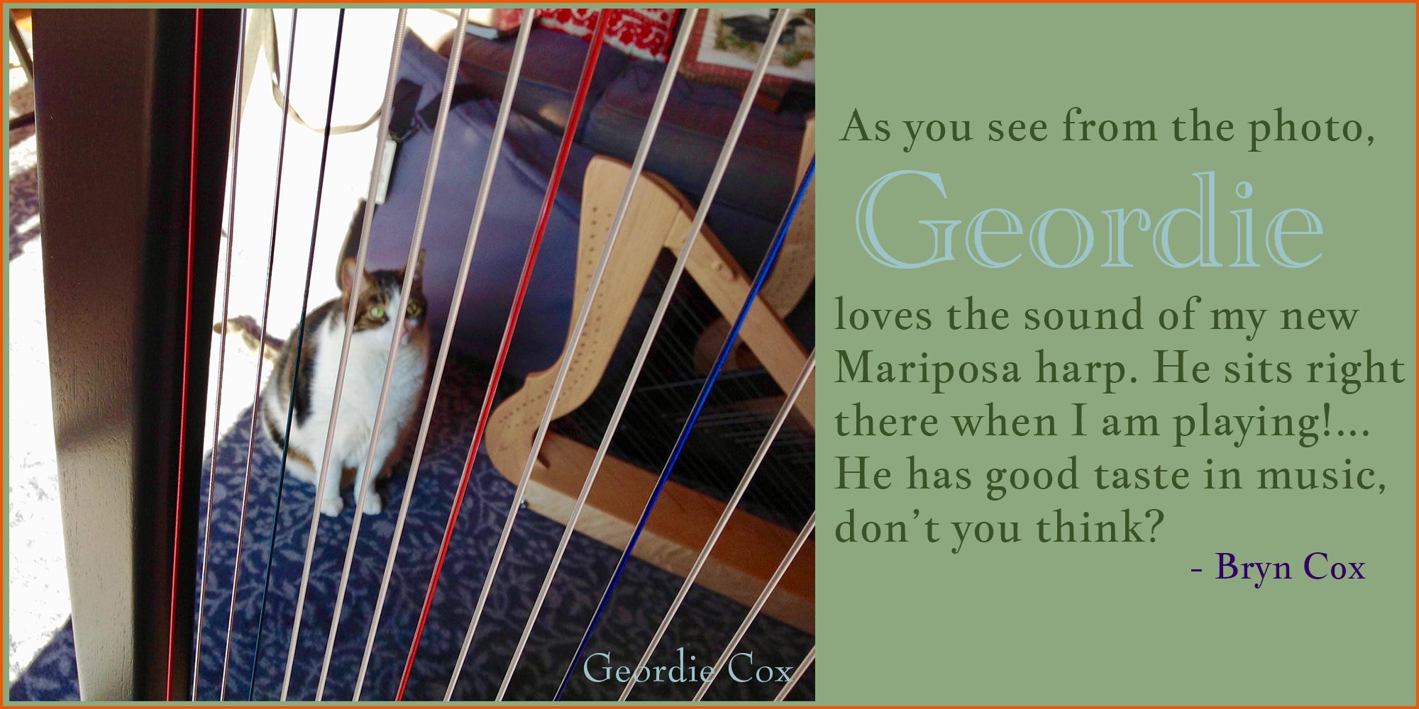 Bryn Cox' Mariposa Harp