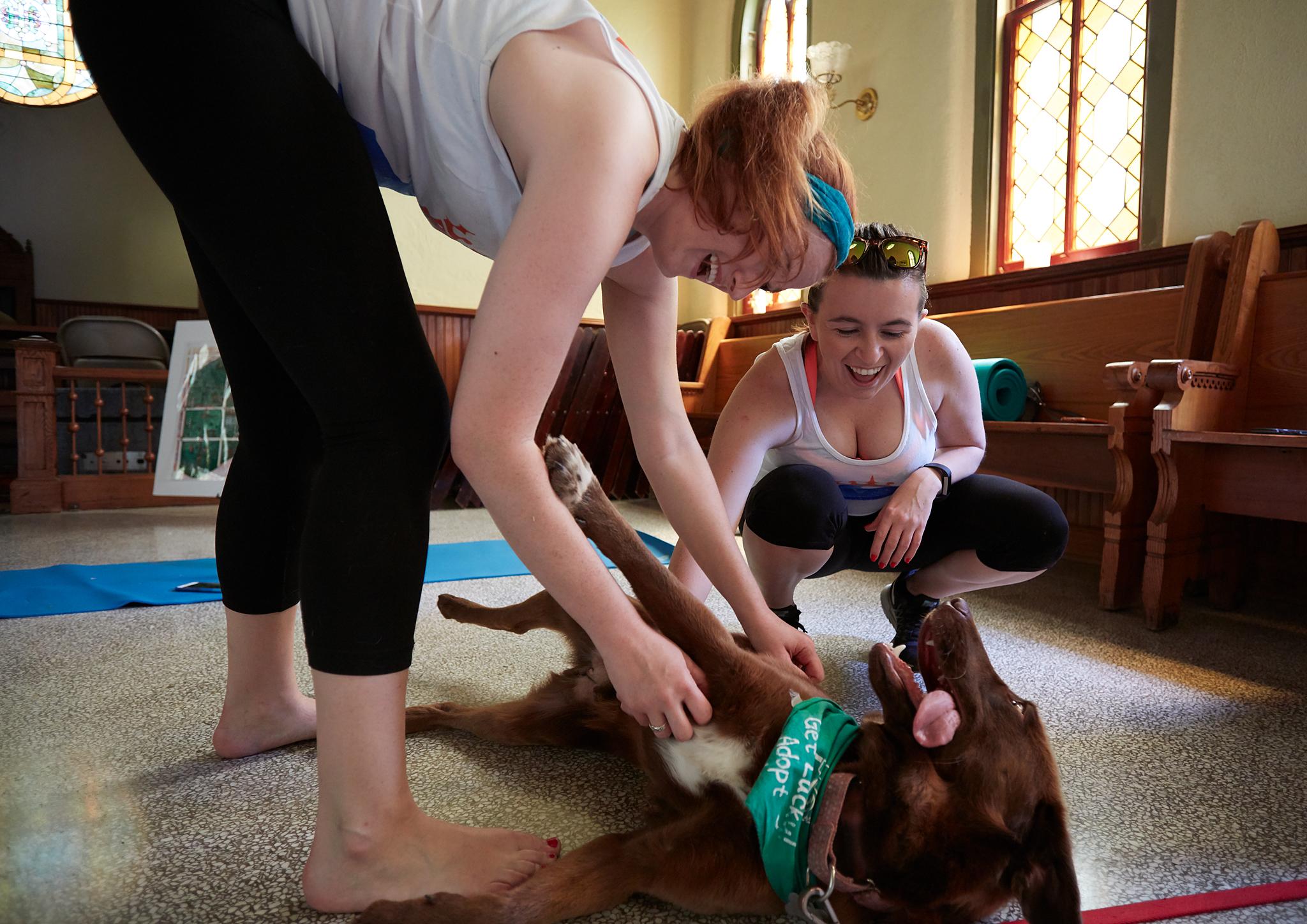 Puppy Yoga 027.jpg